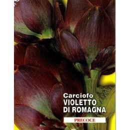 alcachofa violeta de romagna - semillas ecologicas