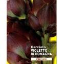 semillas ecológicas de alcachofa violeta de romagna
