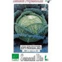 repollo savoy pascualino - semillas ecológicas