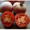 semillas ecológicas de tomate de colgar mala cara