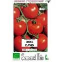 semillas ecologicas de tomate uc 82 davis