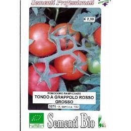 semillas ecológicas de tomate rama
