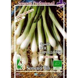 semillas ecológicas de cebolla blanca de Lisboa