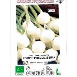 cebolla blanca pompei (semillas ecológicas)