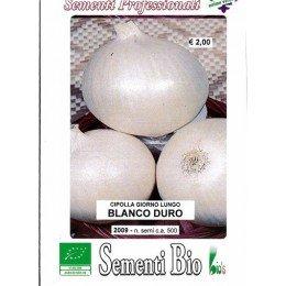 cebolla blanca de conservar dia largo - semillas ecológicas