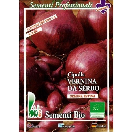 semillas ecológicas de cebolla southport red globe