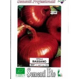 cebolla bassano (semillas ecológicas)