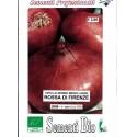 cebolla roja de Florencia (semillas ecológicas)