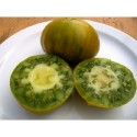 tomate verde de Orista, semillas ecologicas