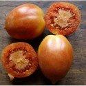 tomate can bogunya (de colgar) semillas ecológicas