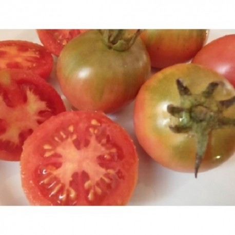 tomate St. Jaume de Sesoliveres