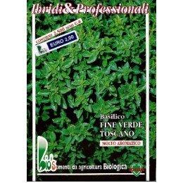albahaca fina de la Toscana . semillas ecológicas