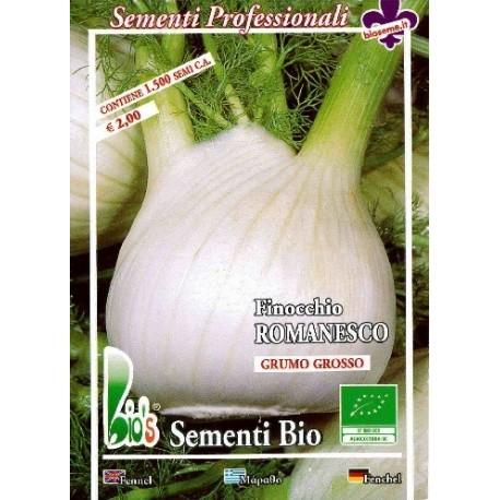 hinojo romanesco semillas ecologicas