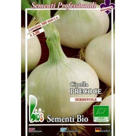 cebolla blanca agostana semillas ecologicas