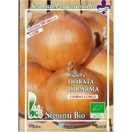 cebolla dorada de Parma semillas ecológicas