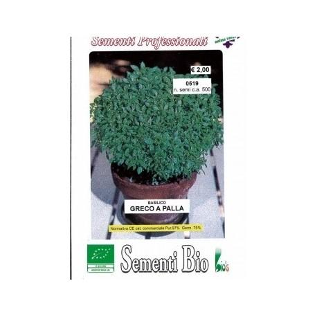 semillas ecologicas de albahaca griega