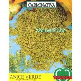 anis (pimpinella anisum) - semillas ecologicas