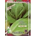 lechuga Romana precoz de verano semillas ecológicas