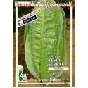 lechuga Romana verde de invierno semillas ecológicas