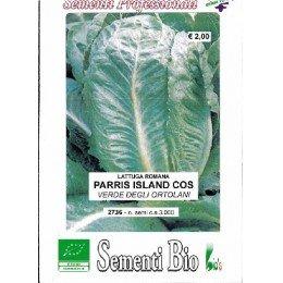 lechuga Romana Parris Island cos semillas ecológicas