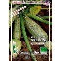 calabacin greyzini - semillas ecológicas