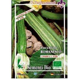 calabacin romanesco - semillas ecologicas - www.planetasemilla.es