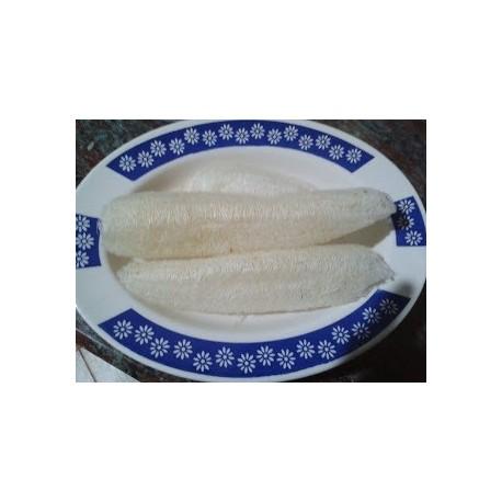 calabaza esponja - luffa