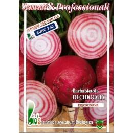 remolacha Chioggia (semillas ecológicas)
