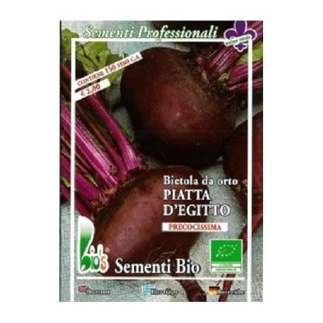 remolacha Chioggia semillas ecológicas
