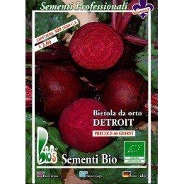 remolacha Detroit semillas ecológicas