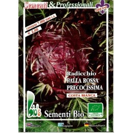 achicoria roja de Verona semillas ecológicas
