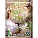achicoria de Lusia semillas ecológicas