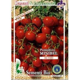 tomate red cherry - semillas ecológicas