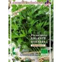 perejil gigante de Italia (semillas ecológicas)