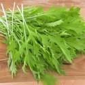 col china mizuna- semillas ecológicas