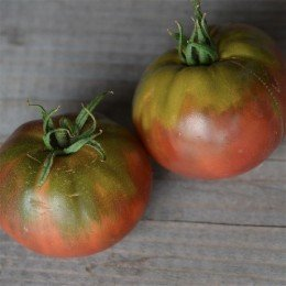 tomate Black Sea Man - semillas ecológicas