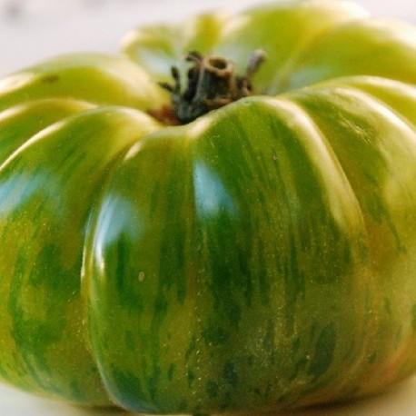 tomate charlie green (Semillas Ecológicas)