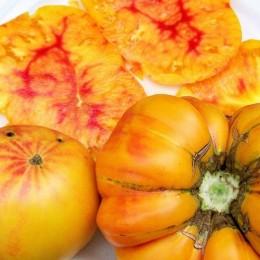 tomate german gold (Semillas Ecológicas)