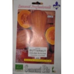 calabaza violina - butternut rugosa - semillas ecológicas