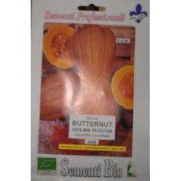 calabaza butternut rugosa - semillas ecológicas