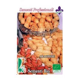 cacahuetes - semillas ecológicas