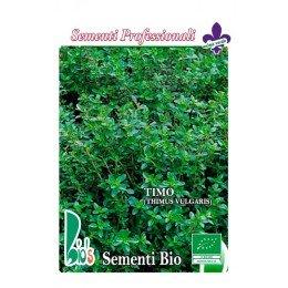 tomillo (thimus vulgaris) - semillas ecologicas