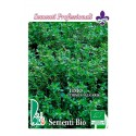 semillas ecológicas de tomillo (thimus vulgaris)