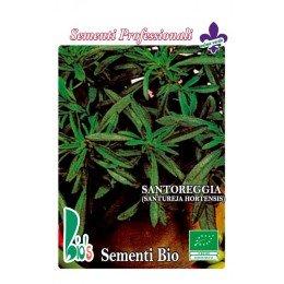 ajedrea (santureja hortensis) - semillas ecológicas