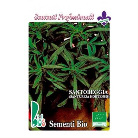 semillas ecológicas de ajedrea (santureja hortensis)
