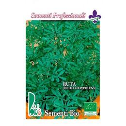 ruda (rutha graveolens) - semillas ecologicas