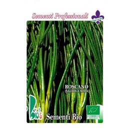 barrilla (salsola soda) - semillas ecológicas