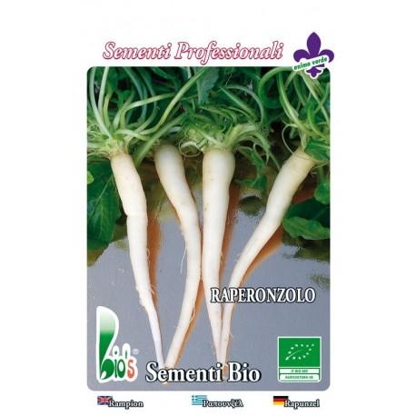 semillas ecológicas de rapónchigo (campanula rapunculus)