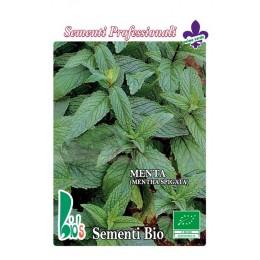 hierbabuena (mentha spigata) - semillas ecológicas