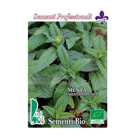 hierbabuena (mentha spicata) - semillas ecológicas